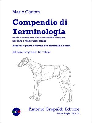 Compendio di Terminologia – Trilogia