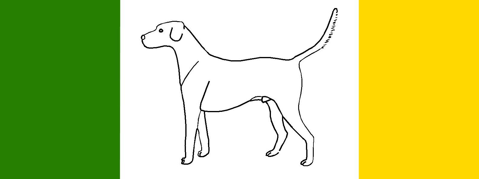 Banner trotto Foxhound